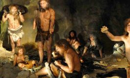 Modern İnsan Genomunda Neandertal İzleri Var