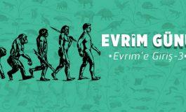 Evrim'e Giriş -3: Türler Ürüyor