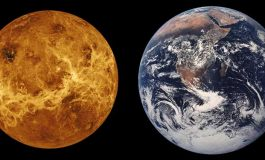 Bekle Bizi Venüs
