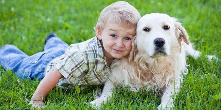 Evcil Hayvanlar Otizmli Çocukları İletişime Açık Yapıyor