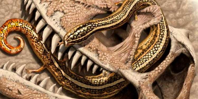 Paleontologlar 4 adet ayaklı yılan fosili buldular!