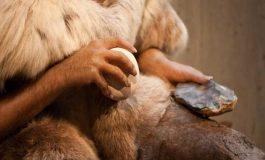 Neandertal yapımı kemik aletler
