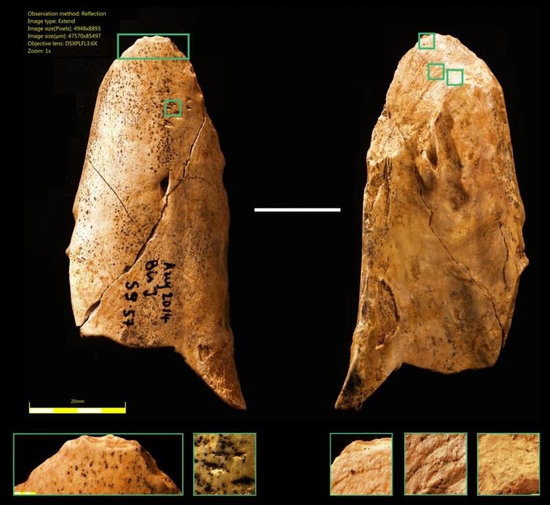 neandertaller-aletler-yapıyordu-bilimfili