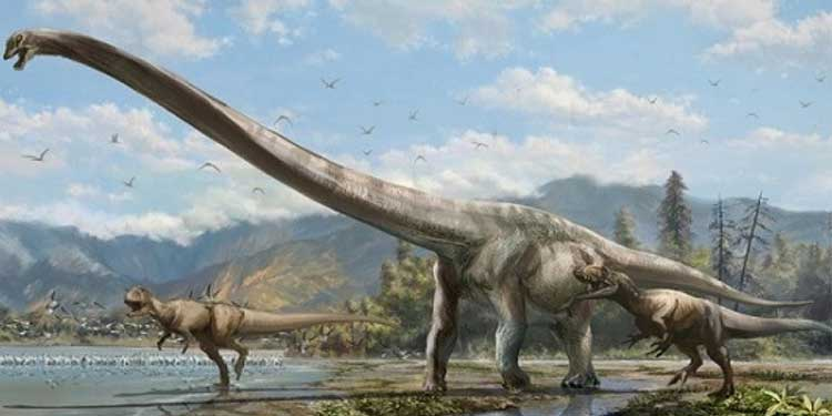 Çin'de Uzun Boyunlu Devasa Bir Dinozor Keşfedildi !