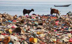 Denizlerde Bütün Sahilleri Kaplayabilecek Kadar Plastik Var!
