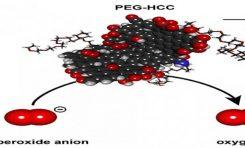 Nano-Antioksidanlar Güçlerini Ispatlıyorlar !