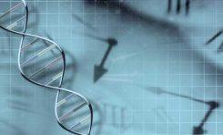 """Ne Kadar Yaşayacağınızı Tahmin Eden DNA """"Saati"""" Bulundu"""