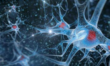 Alzheimer ve Unutkanlığı İlk Fazlarında Durduran İlaç