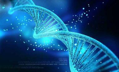 İnsan, Basit Mikroorganizmalardan Geçmiş 100`den Fazla Geni Barındırıyor!