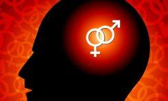 Beyin Cinsiyeti Değiştirilebilir mi?