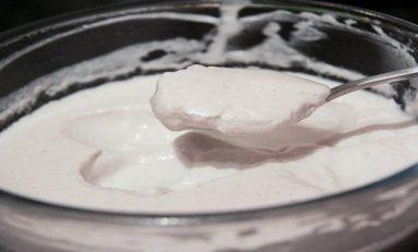 Bir Araştırmacı Kendi Vajinal Bakterisini Kullanarak Yoğurt Üretti