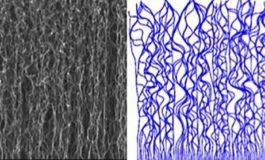 Karmaşık Karbon Nano-yapılarının(CNT) Nasıl Oluştuğu Artık Biliniyor!