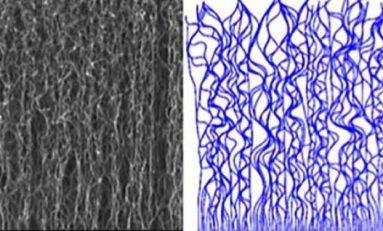 Karmaşık Karbon Nano-yapılarının (CNT) Nasıl Oluştuğu Artık Biliniyor!