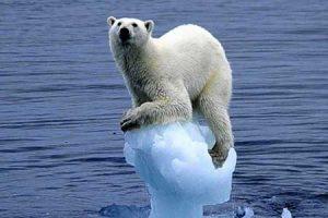 kuresel-isinmanin-etkileri-nelerdir-buzullarin-erimesi-bilimfilicom