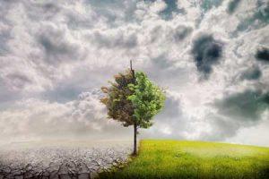 kuresel-isinmanin-etkileri-nelerdir-mevsimelerin-degismesi-bilimfilicom