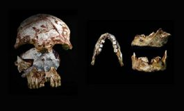 Laos'ta Bulunan İki İnsan Fosili İlk İnsanlardaki Çeşitliliği Ortaya Çıkarıyor