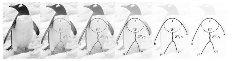 penguen-anomalisi-bilinmeyen-parcaciklara-isaret-bilimfilicom1
