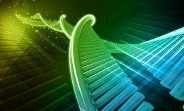 Altıncı DNA Bazı Bulundu!