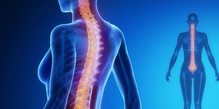 Bilim İnsanları, Omurilikte Zarar Görmüş Sinir Hücrelerini Yenilemeyi Başardılar!