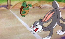 Evrimsel Bir Gerçek: Kaplumbağa ile Tavşan Hikayesi