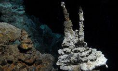 Kompleks Hücrelerin Evrimindeki Eksik Halka Bulundu!
