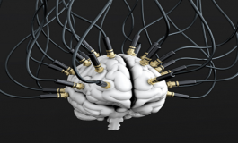Beyin Okuyan Bilgisayar Programı Düşünceleri Yazıya Döküyor