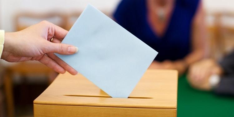 Beynimiz kime oy vereceğimize nasıl karar veriyor?