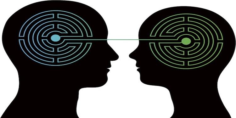 Duygusal Beyinler Rasyonel Beyinlerden Fiziksel Olarak Farklı