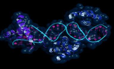 Ebeveynlerin Yaşadığı Çevrenin Çocuğun DNA'sını Nasıl Etkilediğine İlk Delil !