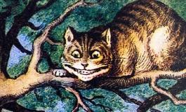 Kuantum Cheshire Kedisi Standart Kuantum Mekaniği ile Açıklanabilir mi?
