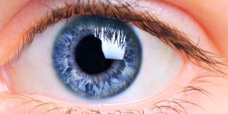 Mavi Gözler Bu Rengi Nereden Alıyor?