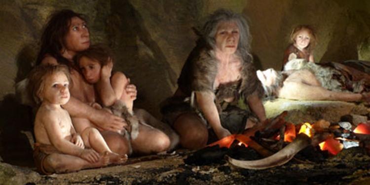 Neandertal ve İnsan Üremesine Dair İlk Kanıt