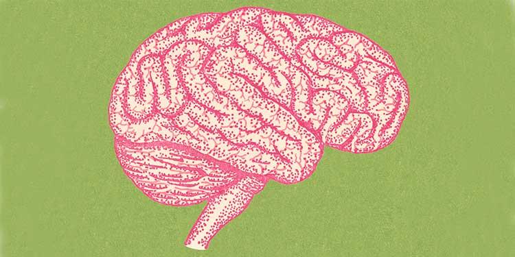 Tüm Robotlar İçin Ortak Bir Beyin