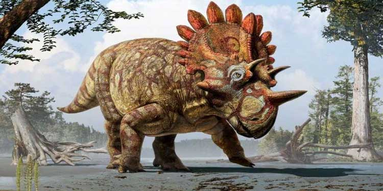 Yeni Boynuzlu Dinozor Türü Keşfedildi!