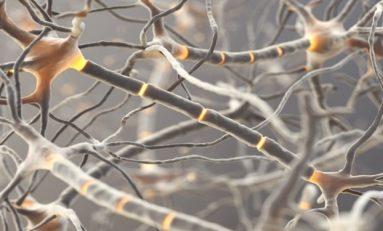 Gerçek fonksiyonlu yapay nöron üretildi
