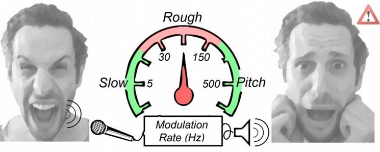 Ses özelliği olan roughness - dalgalılık - insan çığlığının korku göstergesi olma durumunun tanımlanmasında da kullanılıyor - Görsel : Luc Arnal