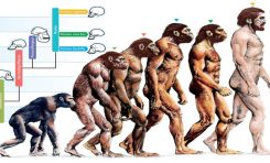 İnsanlar Daha Uzun Boylu ve Daha Zeki Olmak Üzere Evrimleşti