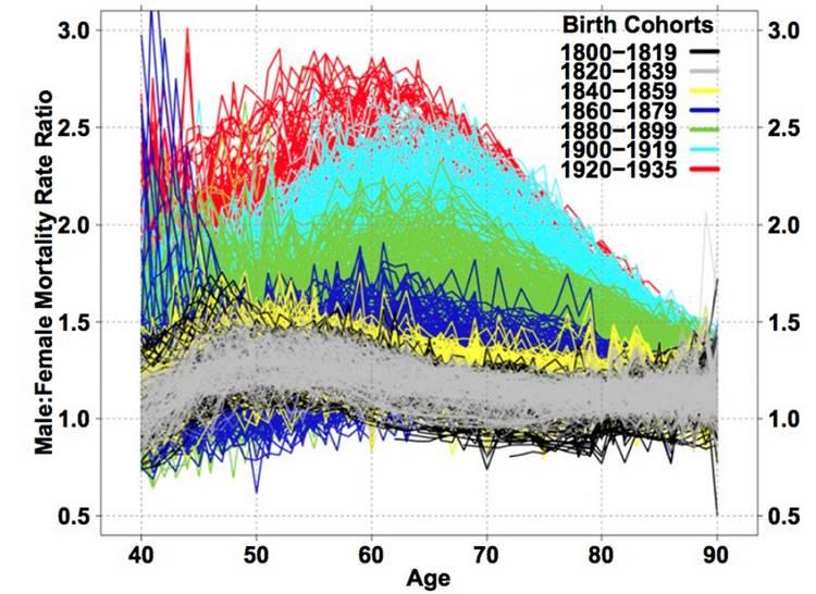 Grafik : Dikey eksende Erkek : Kadın Ölüm Oranlarının Oranı - Yatay eksende Yaş tanımlanmış durumda. Yukarıdaki lejandda ise Yaş-taburlarının yıllara göre ayrılmış çizgi renkleri gösteriliyor
