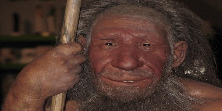 Mağara İnsanları da Dahil Olmak Üzere Koku Duyumuz Nasıl Evrimleşti?