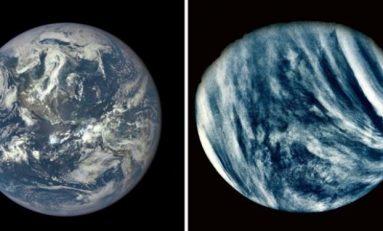 Neden Venüs'te Değil De Dünya 'da Yaşıyoruz?