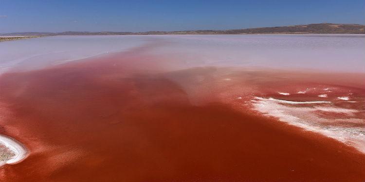 Tuz Gölü Neden Kan Kırmızı Renge Döndü?