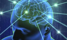 Akıldışı Kararlar Kuantum Olasılıksal Olabilir