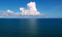 Küresel Okyanus Araştırması, Besin Zincirinin Çöküşünü Öne Sürüyor