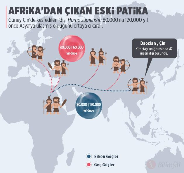 cinde-bulunan-disler-afrikadan-erken-ayrildigimizi-gosteriyor-map2-bilimfilicom