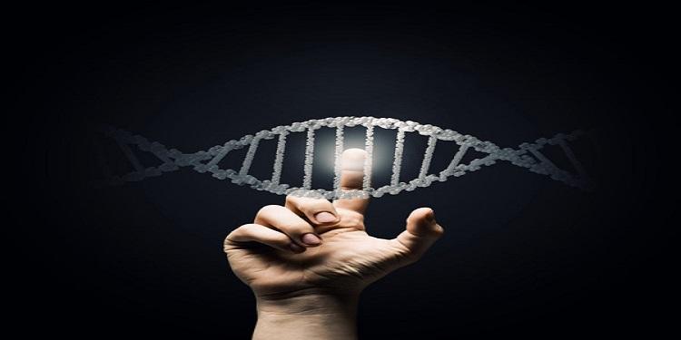 Evrimi Kullanarak İnsan Genomuna Dair Öngörüde Bulunmak