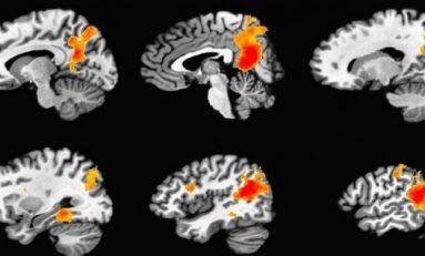 Beyin Kalıcı Hatıraları Nasıl Oluşturur?