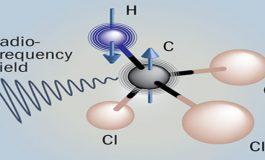 Zaman Oku Kuantum Çalkalanmalarında mı Gizli?