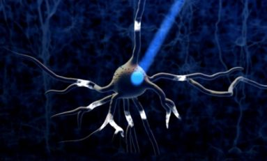 Optogenetik: Işık ile Uyarıda Yeni Bir Bulgu