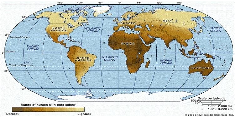 Yeryüzündeki deri pigmenti dağılımı - bkz. Encylopedia Brittanica