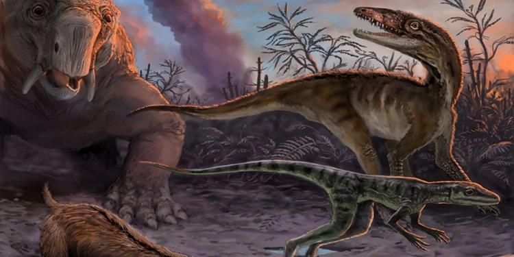 İlk Dinozorlar Hızla Ortaya Çıkıp Evrimleştiler